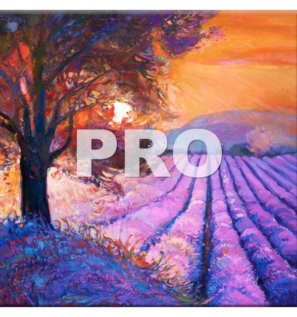 Carrelage Photo 45 x 45 PRO