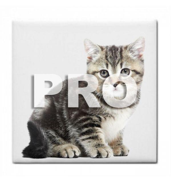 Céramique Photo 10 x 10 PRO