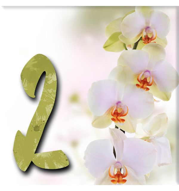 Plaque numéro de maison orchidées