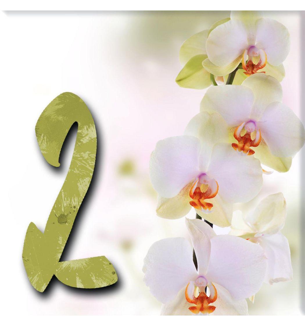 Plaque numéro de maison orchidées - Carrelage personnalisé